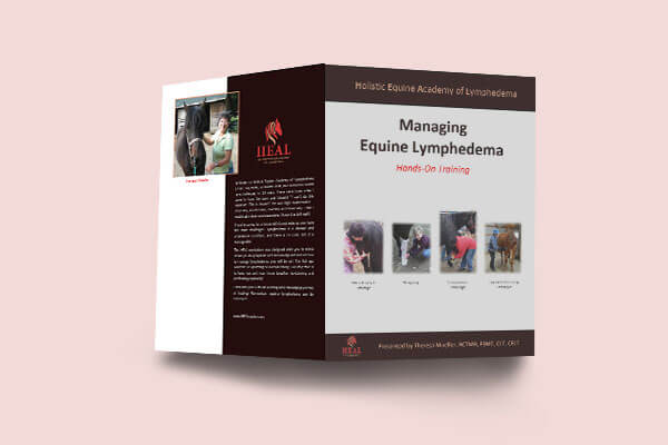 Holistic Equine Academy of Lymphedema Hand-On Training Brochure