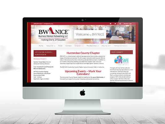 New BW NICE Website - Chapter Page